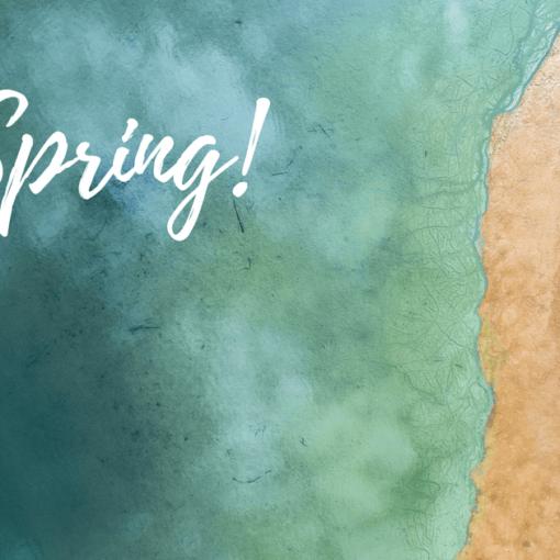 primavera agenzia viaggi varese